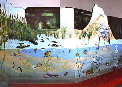 educational - nat.park-aquarium1a.jpg